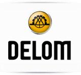 logo_delom